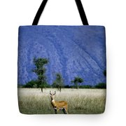 A Male Ugandan Kob Stands His Ground Tote Bag