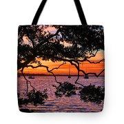 A Mangrove Morning Tote Bag