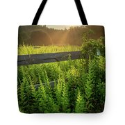 A Midsummer's Morn - Misty Sunrise Over Connecticut Meadow Tote Bag