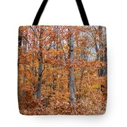 A Mixture Of Orange Tote Bag