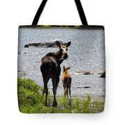 A Mom And Her Baby Tote Bag