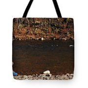 A Moment By The Water Tote Bag