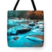 A Moment In The Great Smoky Mountains Tote Bag by Rich Leighton