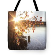 A Moment Of Pause Tote Bag