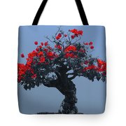 A Moments Serenity Tote Bag