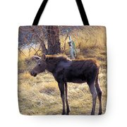 A Moose In Early Spring  Tote Bag