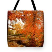 A Morning In Autumn - Lake Carasaljo Tote Bag