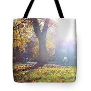 A Morning In Fall Tote Bag