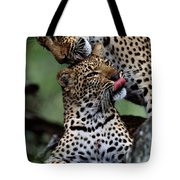 A Mother Leopard, Panthera Pardus Tote Bag