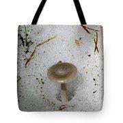 A Mushroom In Snow  Tote Bag