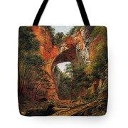 A Natural Bridge In Virginia Tote Bag by David Johnson