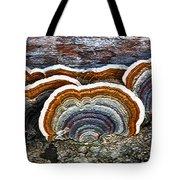 A Natural Landscape Tote Bag