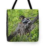 A Nest Full Of Love Tote Bag