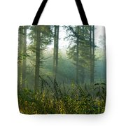 A New Day Has Come Tote Bag