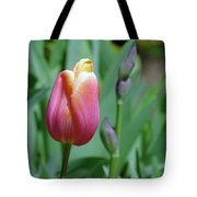 A New Tullip  Tote Bag