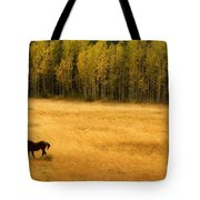 A Nice Autumn Day Tote Bag by James BO  Insogna