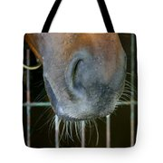 a Nose Knows Tote Bag