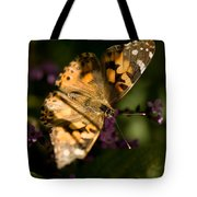 A Painted Lady Butterfly At The Lincoln Tote Bag
