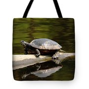 A Painted Reflection Tote Bag