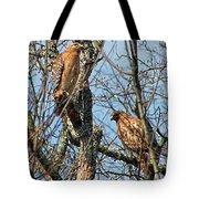A Pair Of Hawks Tote Bag