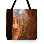 A Pair Of Hikers Go Tote Bag