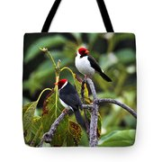 A Pair Of Redheads Tote Bag