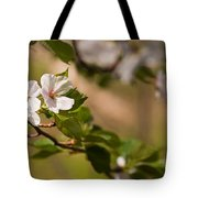 A Panoramic View Of A Cherry Tree Tote Bag