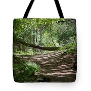 A Path In The Woods Tote Bag