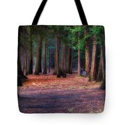 A Path Of Redwoods Tote Bag