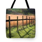 A Path Seldom Taken Tote Bag