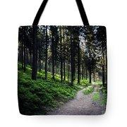 A Path Through A Dense Forest Tote Bag