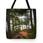 A Path To The Point Tote Bag