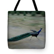 A Peacock On A Hog Farm In Kansas Tote Bag