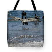 A Pelican In-flight At Playa Manzanillo Tote Bag
