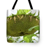 A Perfect Pattern  Tote Bag