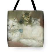 A Persian Cat And Her Kittens Tote Bag by Maud D Heaps