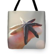 A Person Holds A Tiny Starfish Sea Star On Its Fingertip Of The Index Finger. Tote Bag