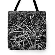 A Pineapple Field Near Nassau, Bahamas, 1883 Tote Bag