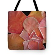 A Pink Experience Tote Bag