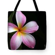 A Pink Plumeria Tote Bag