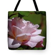 A Pink Rose  Tote Bag