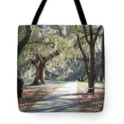 A Place For Contemplation  Tote Bag