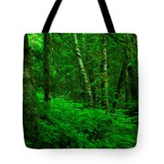 A Place In The Forest Tote Bag