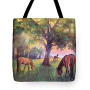 A Place Of Healing Tote Bag