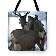A Place To Rest Your Head Tote Bag