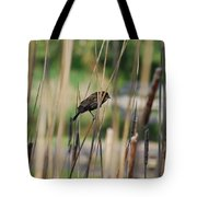 A Plumage Sparrow Tote Bag