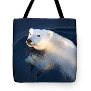 A Polar Bear Glance Tote Bag