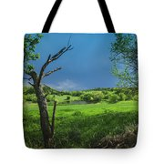 A Pond Just Outside Of Imre... Tote Bag