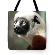 A Portrait Of A Sifaka Primate, A Large Lemur Tote Bag