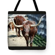 A Portrait Of A Texas Longhorn Steer Tote Bag